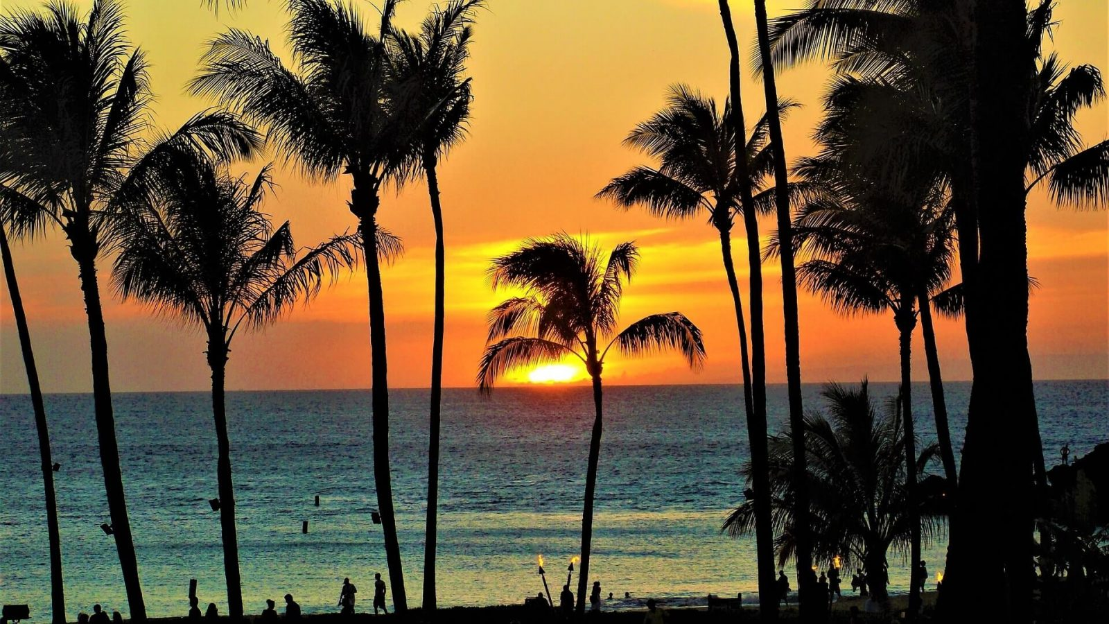 The Best Way to Fly to Hawaii: How I do it for $11 Round-trip 9