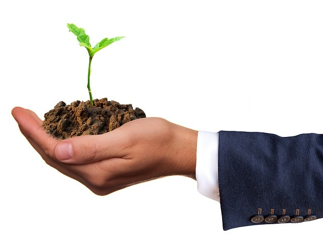 how to grow my business credit